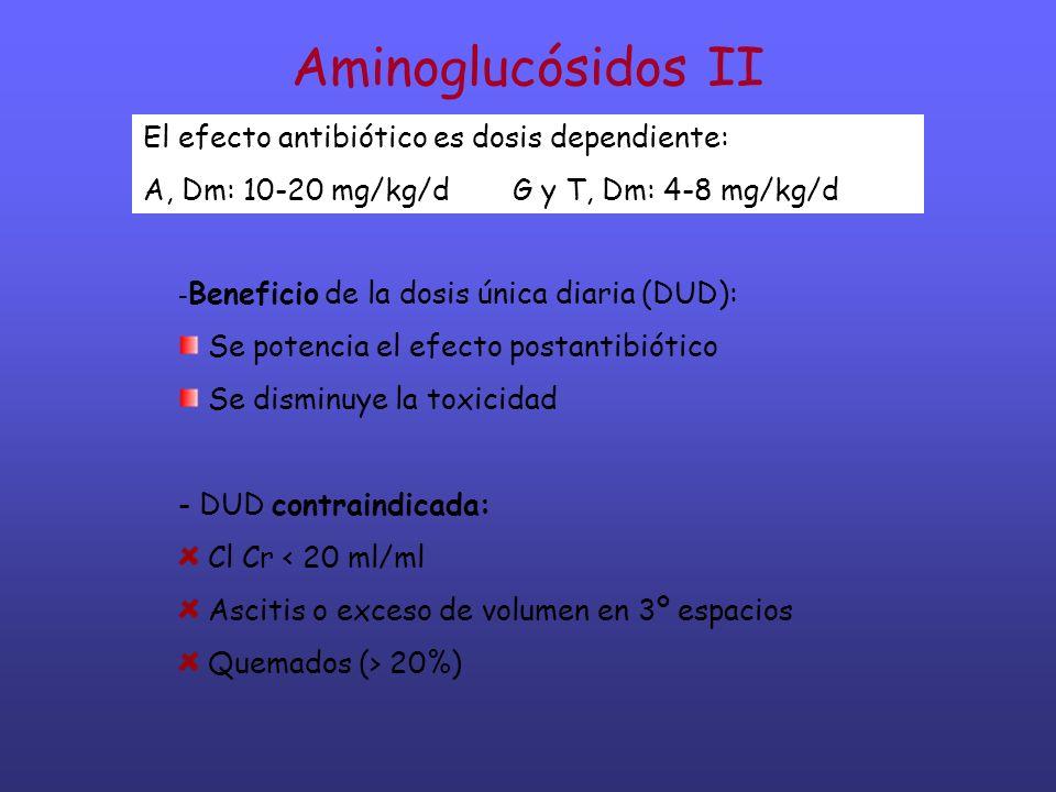 Aminoglucósidos II El efecto antibiótico es dosis dependiente: