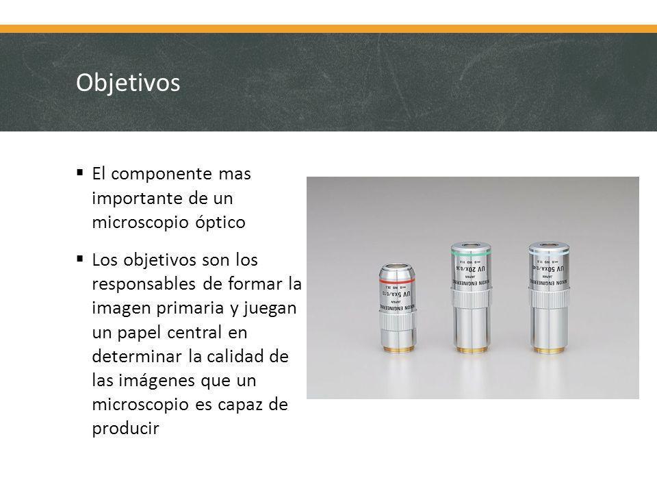 Objetivos El componente mas importante de un microscopio óptico