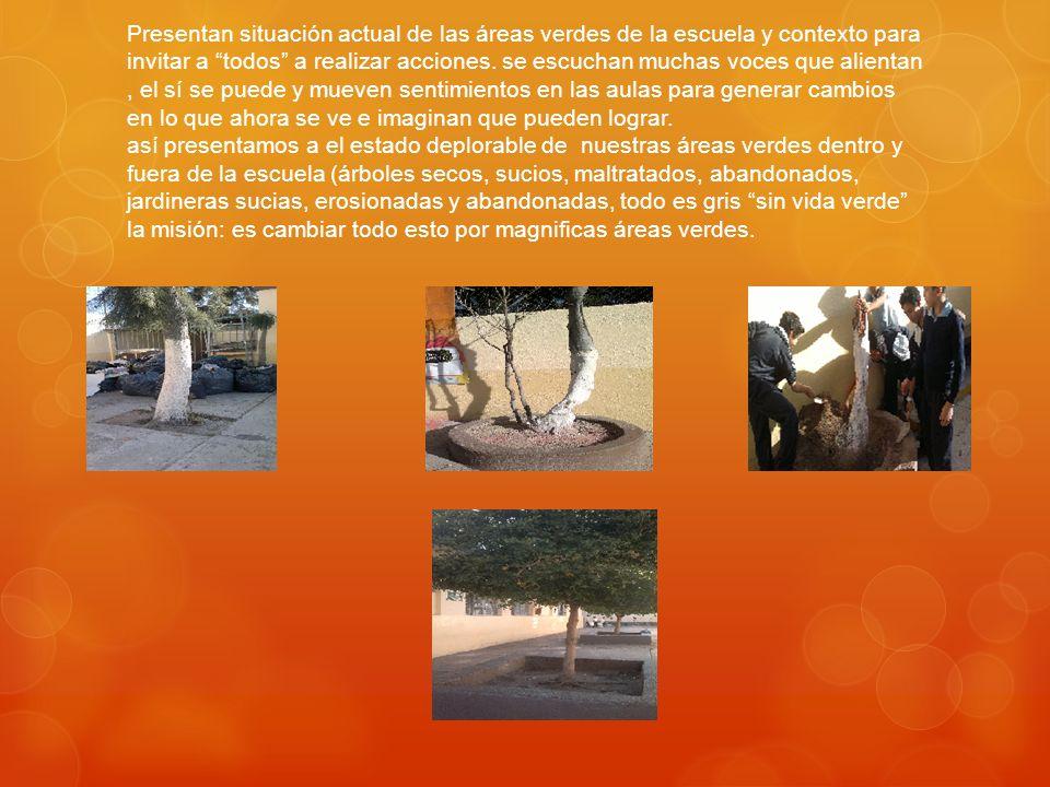 Presentan situación actual de las áreas verdes de la escuela y contexto para invitar a todos a realizar acciones.