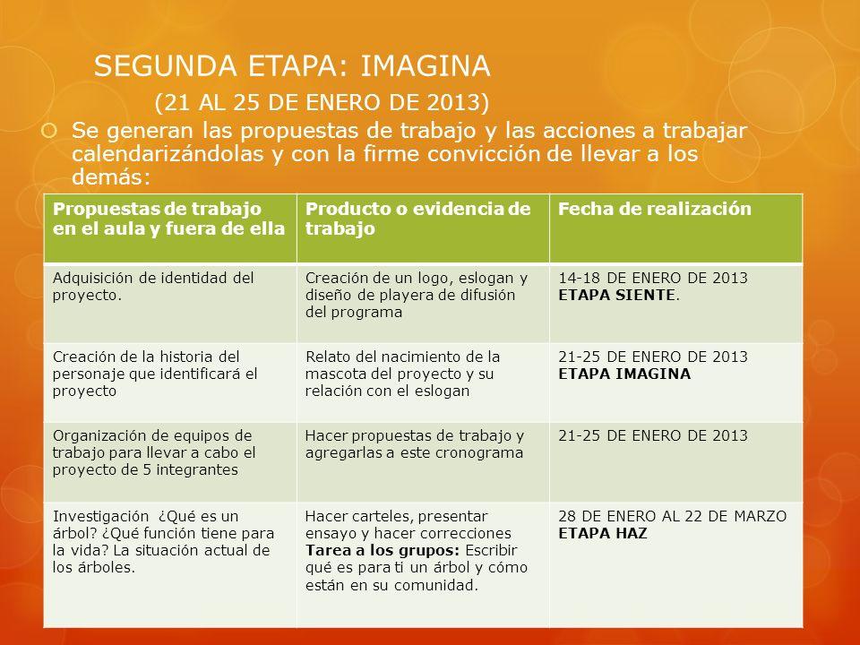 SEGUNDA ETAPA: IMAGINA (21 AL 25 DE ENERO DE 2013)