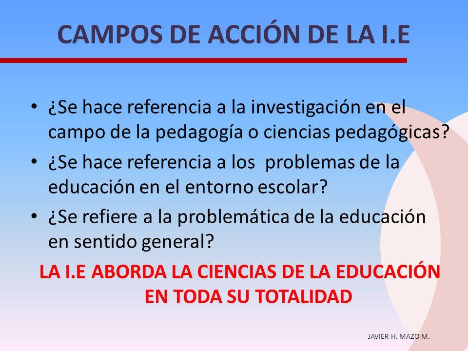 CAMPOS DE ACCIÓN DE LA I.E