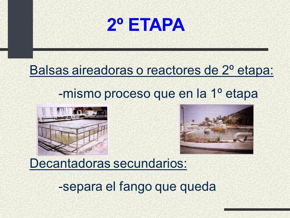 2º ETAPA Balsas aireadoras o reactores de 2º etapa:
