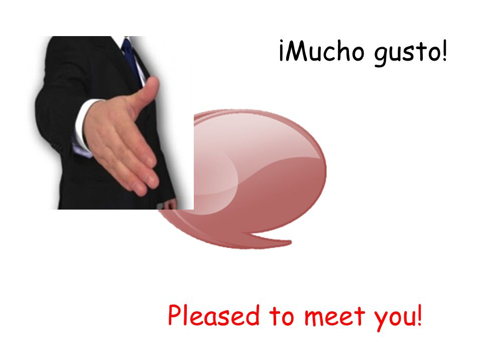 ¡Mucho gusto! Pleased to meet you!