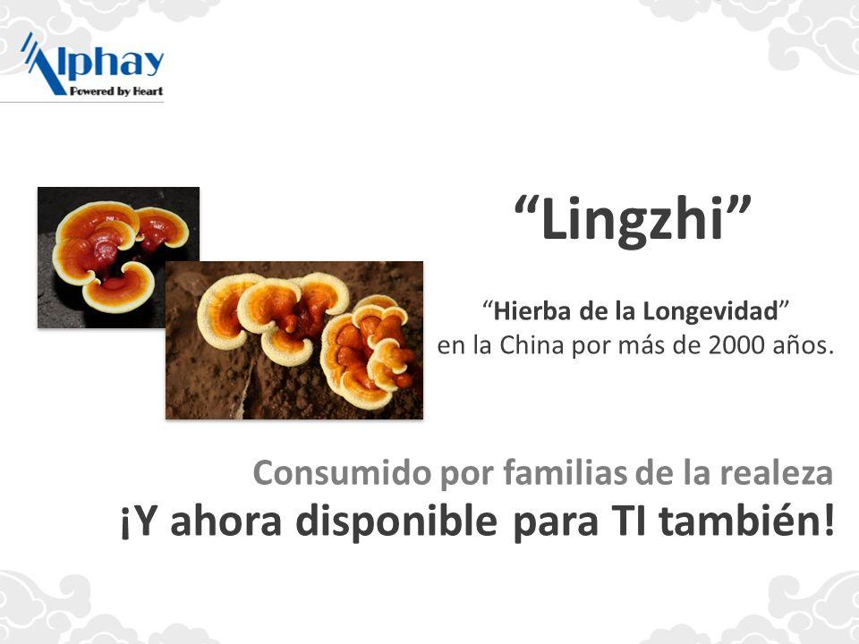 Lingzhi ¡Y ahora disponible para TI también!