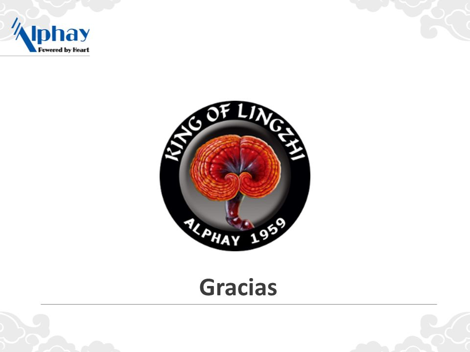 Si tomas la decisión de unirte a Alphay hoy, estaremos aquí para apoyarte, ¡como miembros de la familia Alphay!