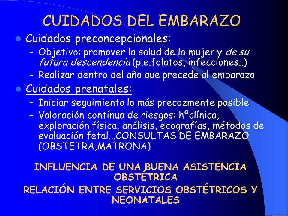 CUIDADOS DEL EMBARAZO Cuidados preconcepcionales: Cuidados prenatales: