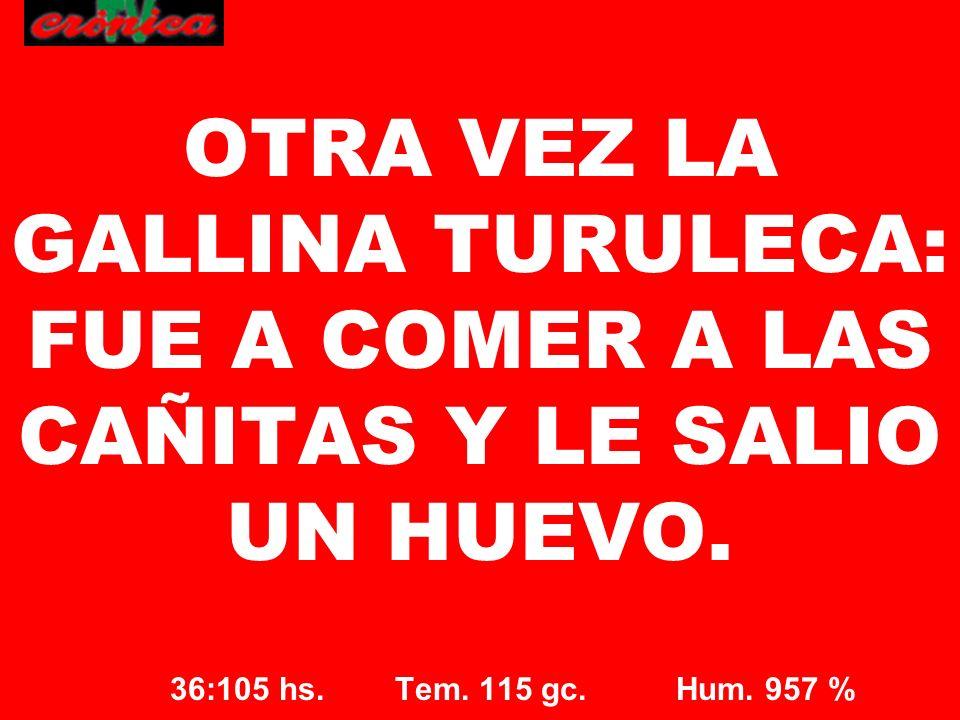 OTRA VEZ LA GALLINA TURULECA: FUE A COMER A LAS CAÑITAS Y LE SALIO UN HUEVO.