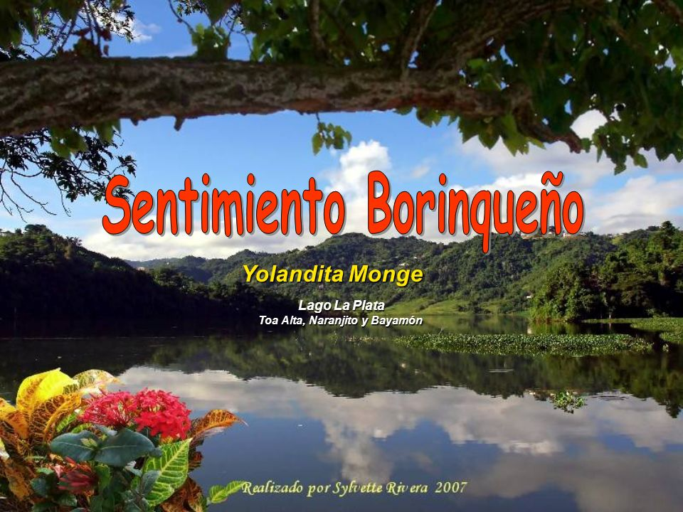 Sentimiento Borinqueño Toa Alta, Naranjito y Bayamón