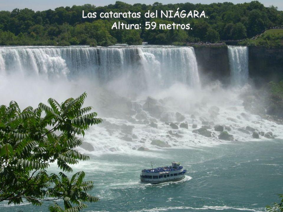 Las cataratas del NIÁGARA. Altura: 59 metros.