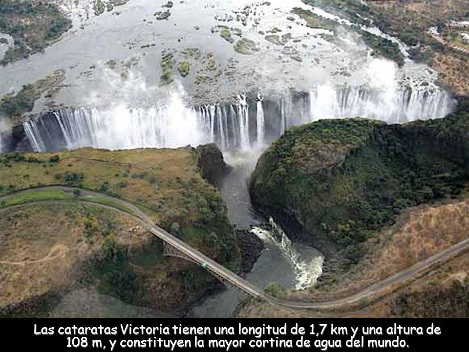 Las cataratas Victoria tienen una longitud de 1,7 km y una altura de 108 m, y constituyen la mayor cortina de agua del mundo.
