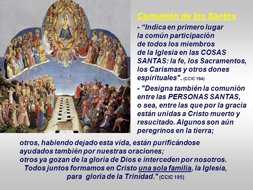 Todos juntos formamos en Cristo una sola familia, la Iglesia,