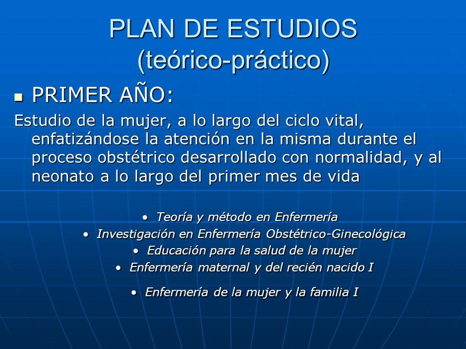 PLAN DE ESTUDIOS (teórico-práctico)