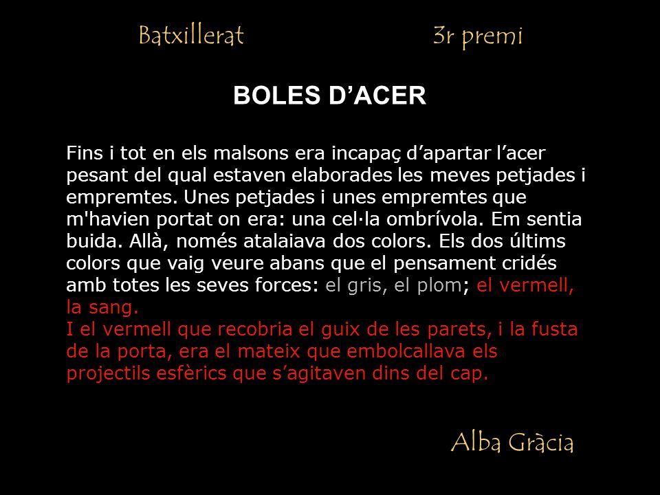 Batxillerat 3r premi BOLES D'ACER Alba Gràcia