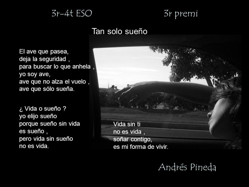 3r-4t ESO 3r premi Andrés Pineda Tan solo sueño El ave que pasea,
