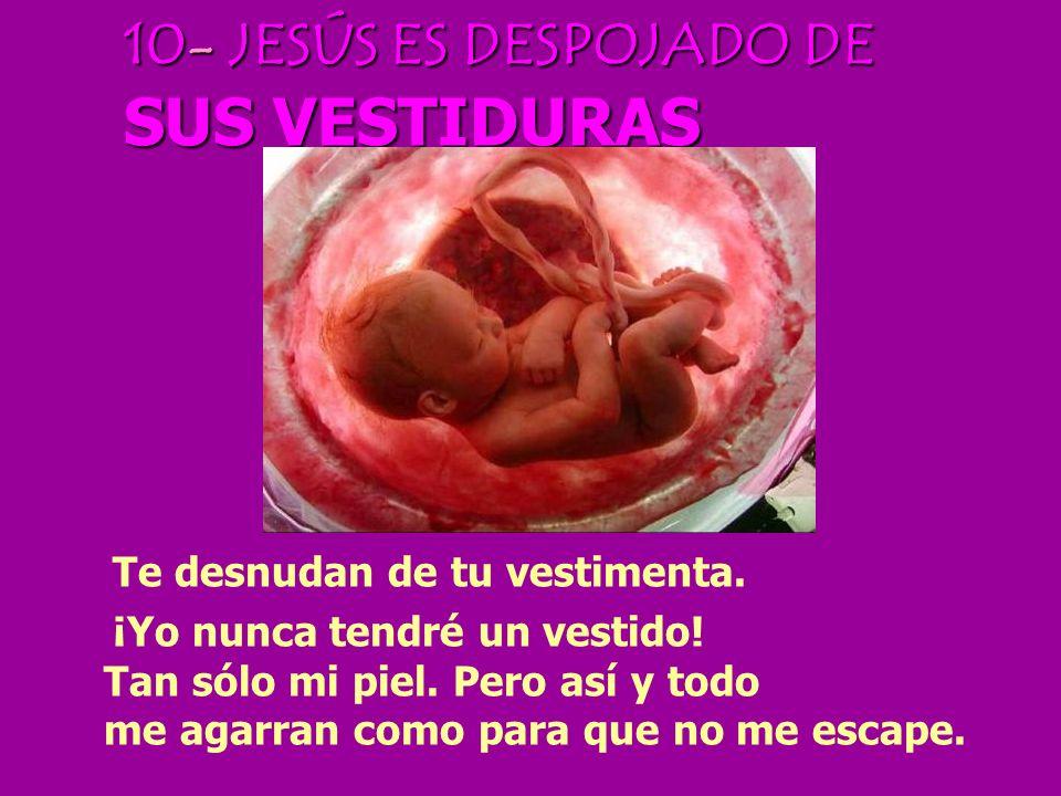 10- JESÚS ES DESPOJADO DE SUS VESTIDURAS
