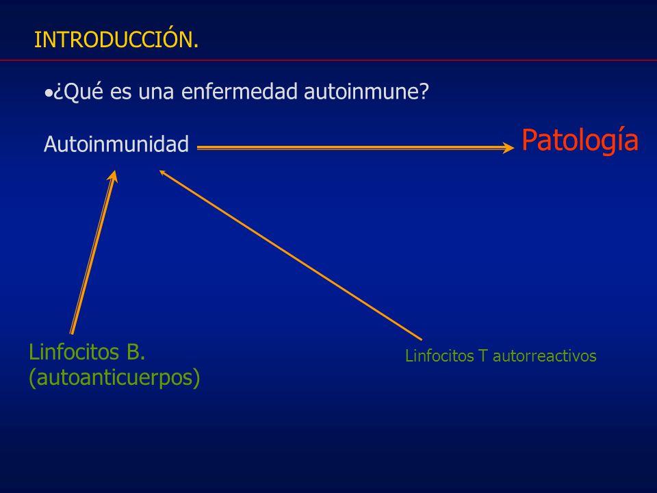 Patología INTRODUCCIÓN. ¿Qué es una enfermedad autoinmune