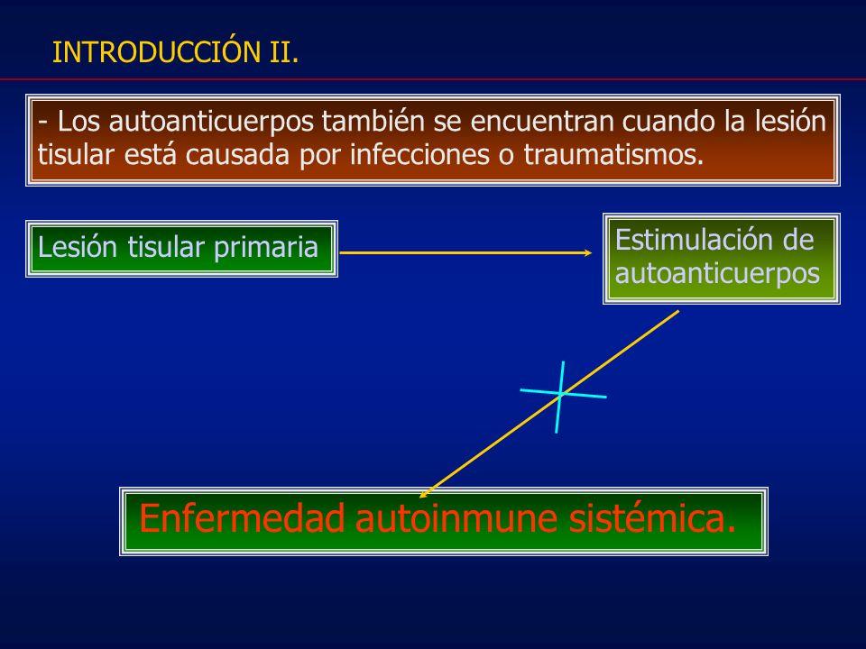INTRODUCCIÓN II.- Los autoanticuerpos también se encuentran cuando la lesión tisular está causada por infecciones o traumatismos.