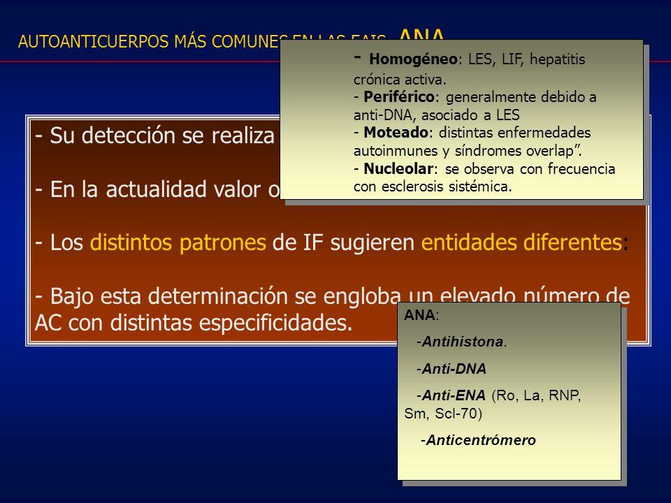 - Homogéneo: LES, LIF, hepatitis crónica activa.