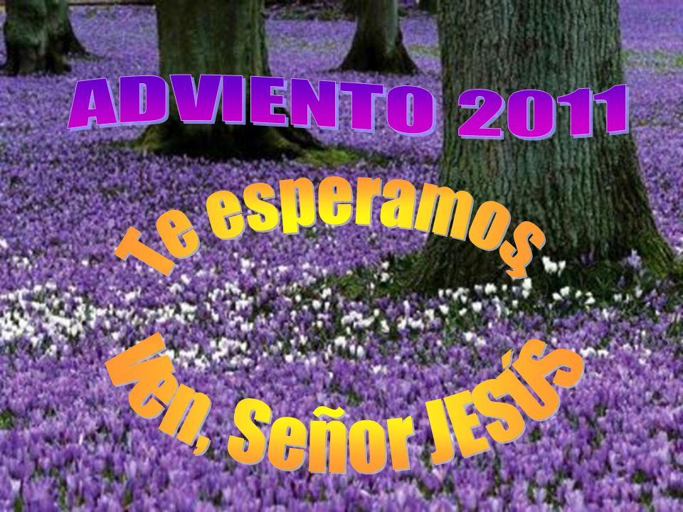 ADVIENTO 2011 Te esperamos, Ven, Señor JESÚS