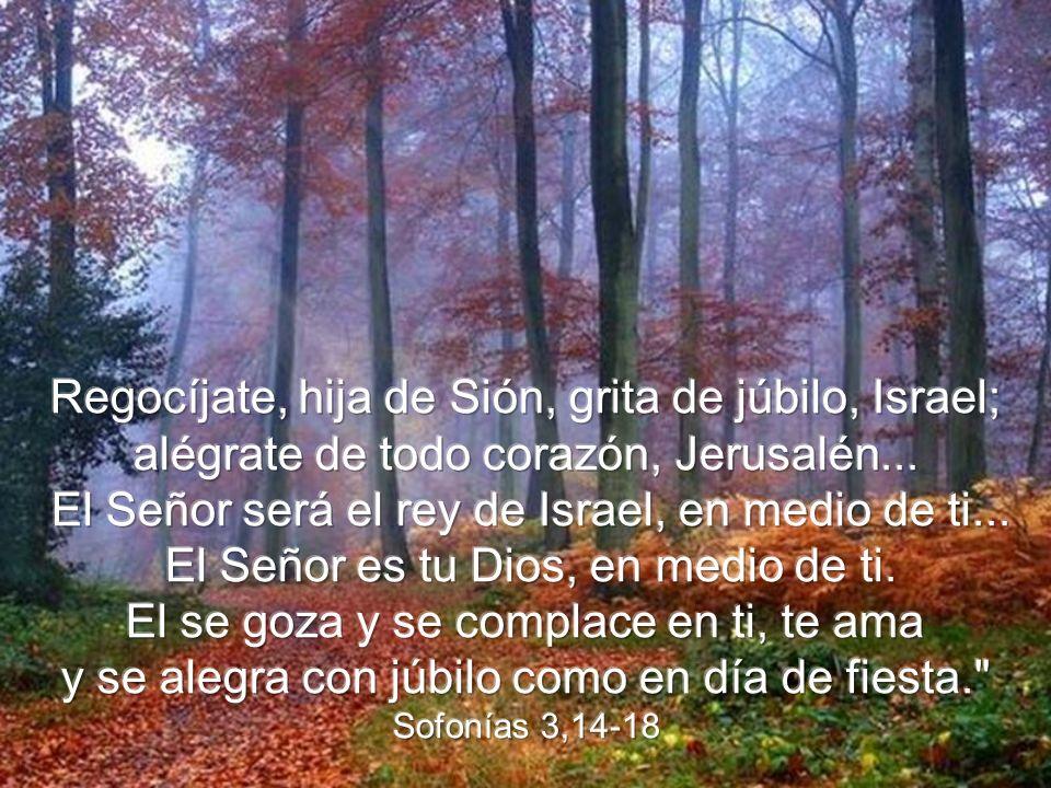 Regocíjate, hija de Sión, grita de júbilo, Israel;