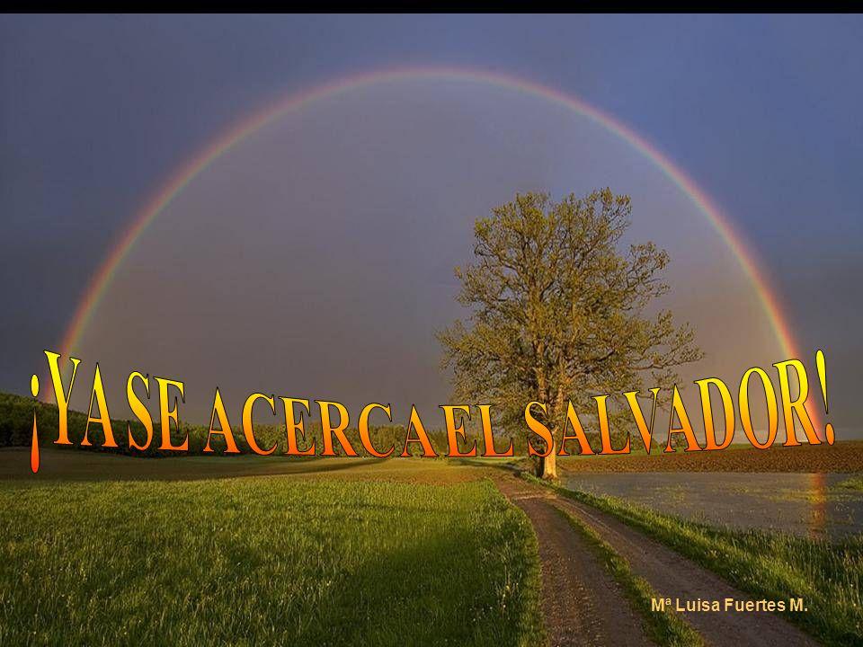 ¡YA SE ACERCA EL SALVADOR!
