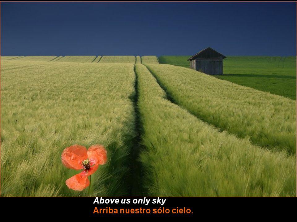 Above us only sky Arriba nuestro sólo cielo.
