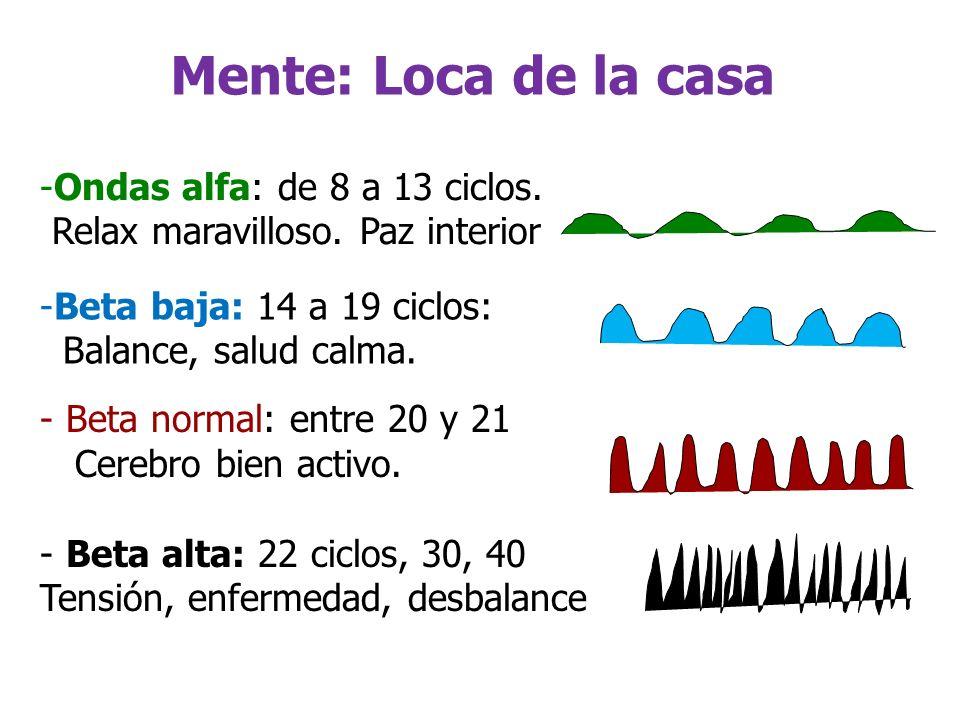 Mente: Loca de la casa Ondas alfa: de 8 a 13 ciclos.