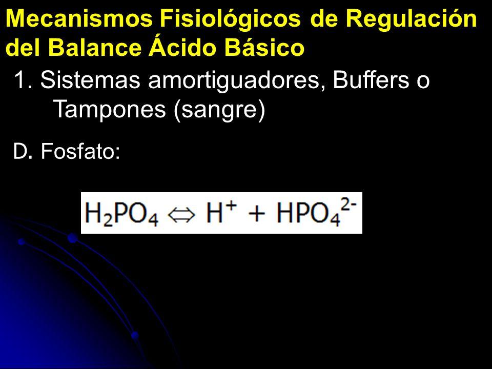 Mecanismos Fisiológicos de Regulación del Balance Ácido Básico