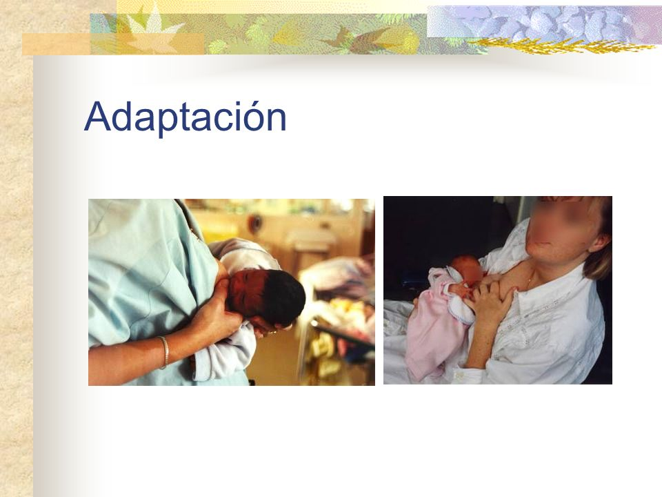 Adaptación