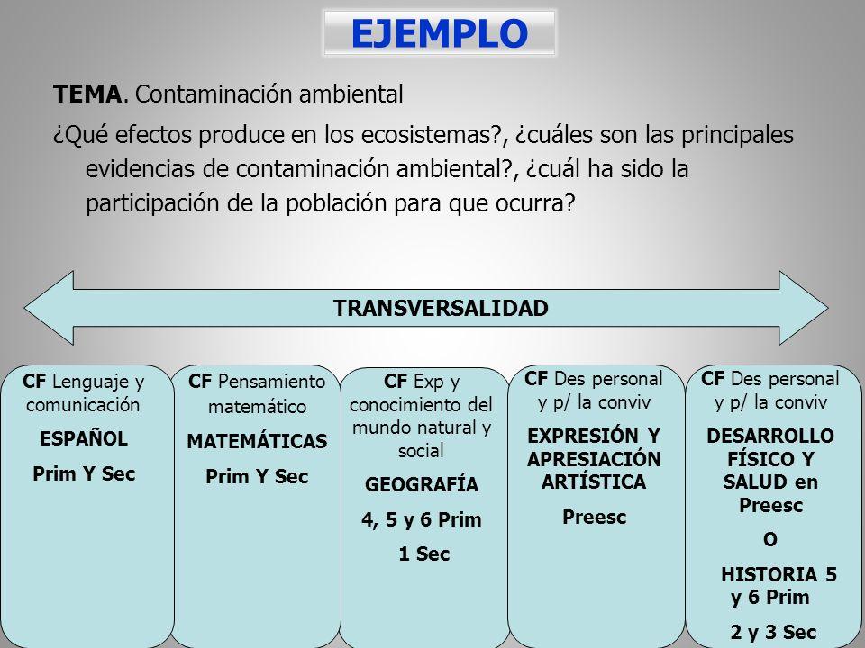 EXPRESIÓN Y APRESIACIÓN ARTÍSTICA DESARROLLO FÍSICO Y SALUD en Preesc