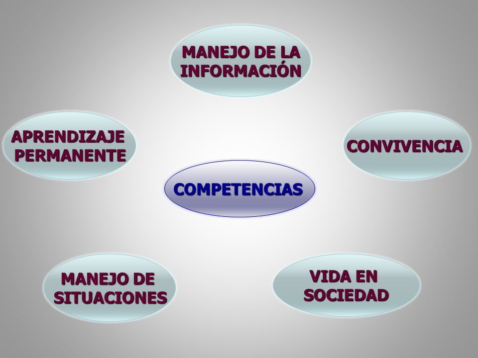 MANEJO DE LA INFORMACIÓN. APRENDIZAJE. PERMANENTE. CONVIVENCIA. COMPETENCIAS. MANEJO DE. SITUACIONES.