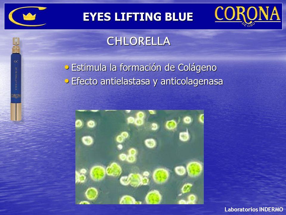EYES LIFTING BLUE CHLORELLA Estimula la formación de Colágeno