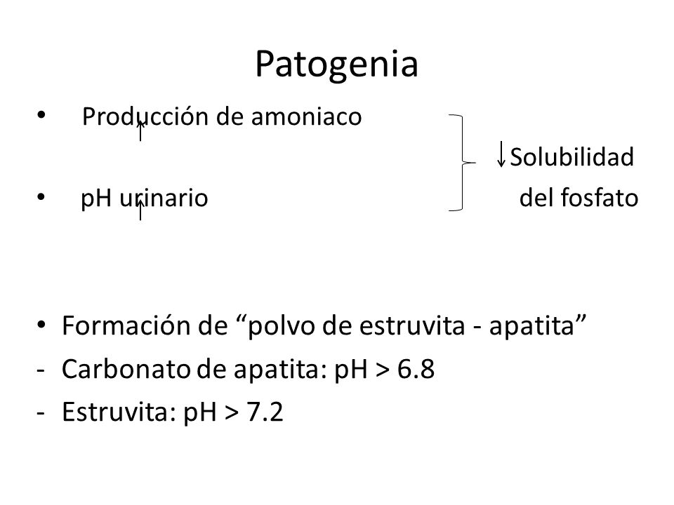 Patogenia Producción de amoniaco