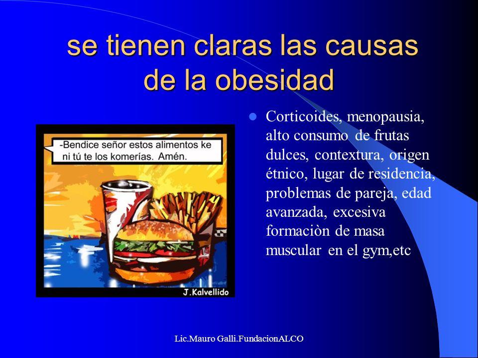 se tienen claras las causas de la obesidad
