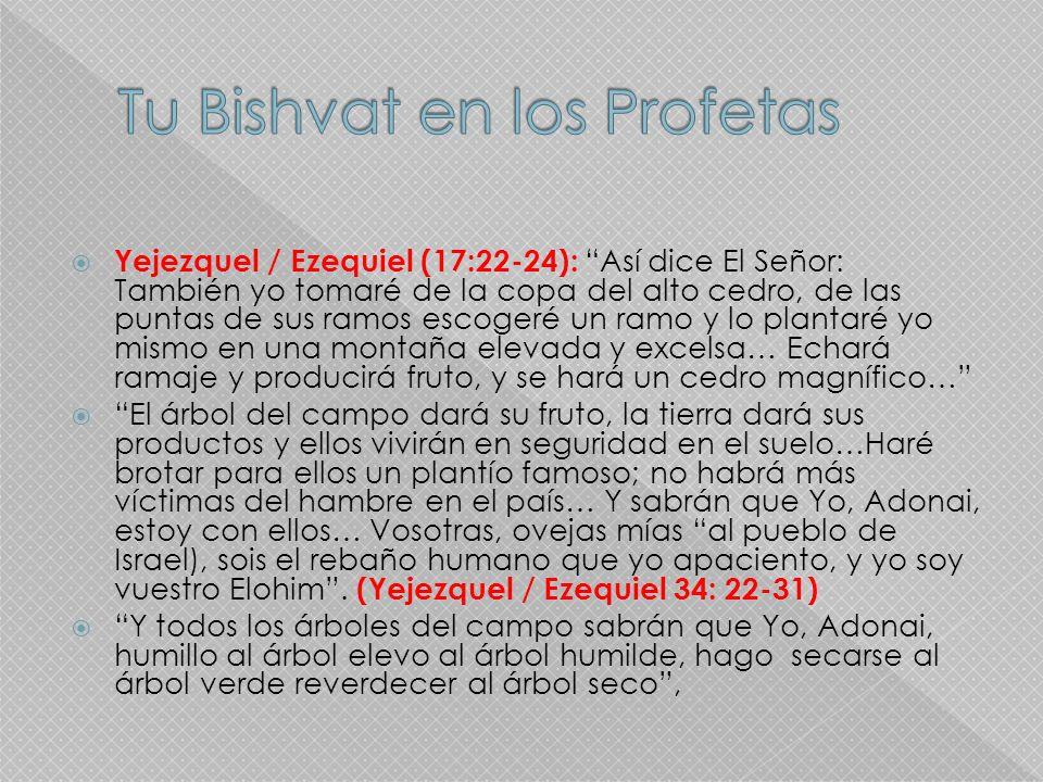 Tu Bishvat en los Profetas