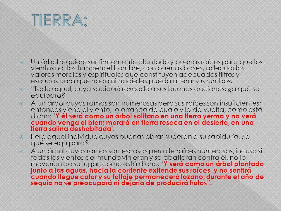 TIERRA: