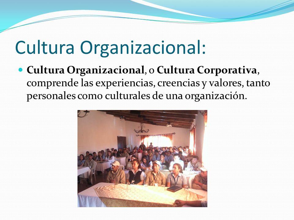 Cultura Organizacional: