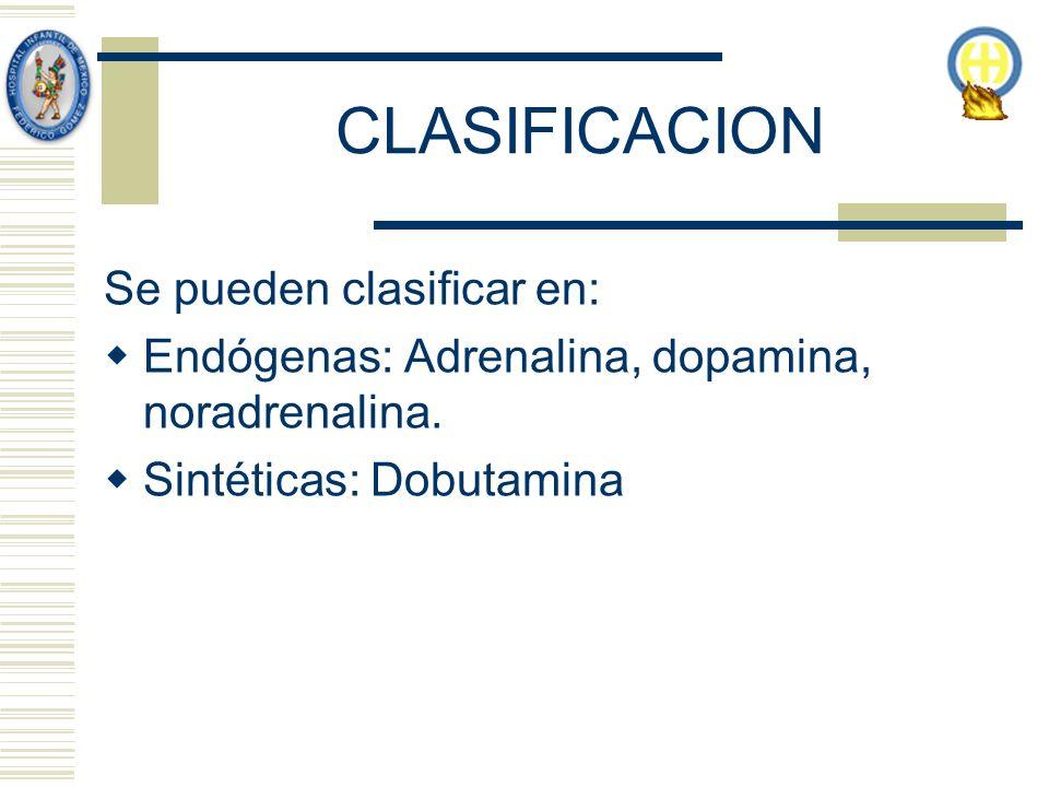 CLASIFICACION Se pueden clasificar en: