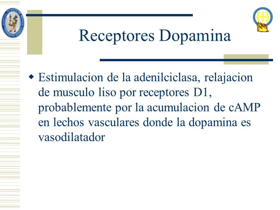 Receptores Dopamina