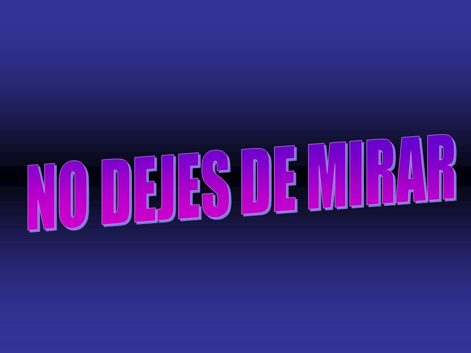 NO DEJES DE MIRAR