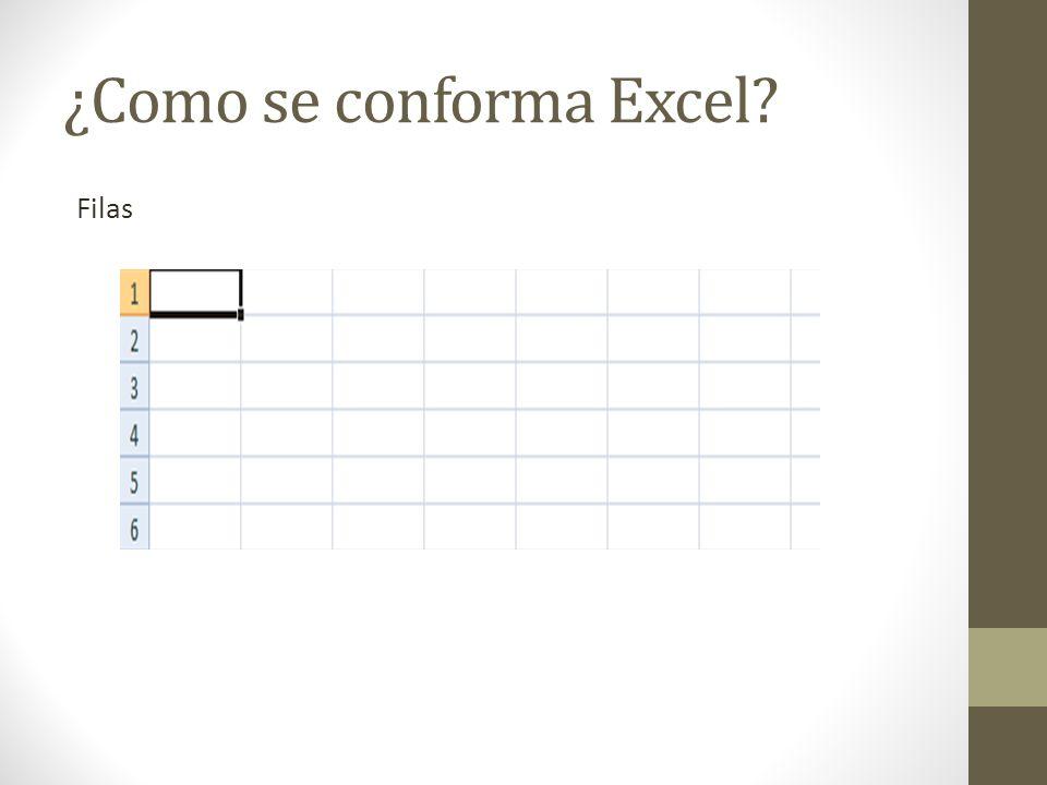 ¿Como se conforma Excel