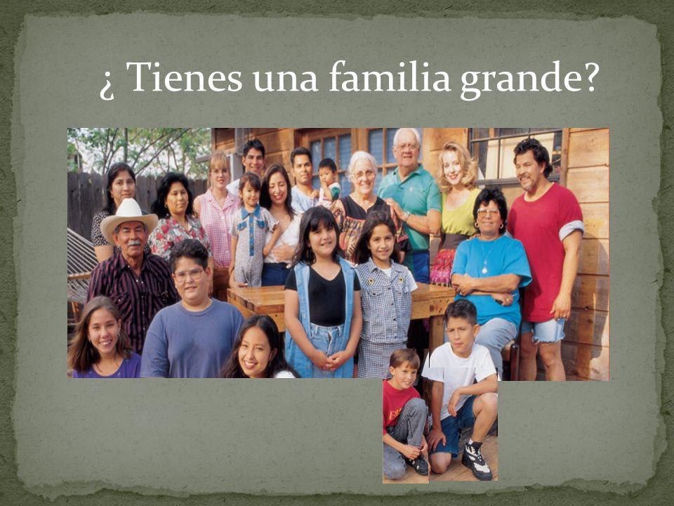 ¿ Tienes una familia grande