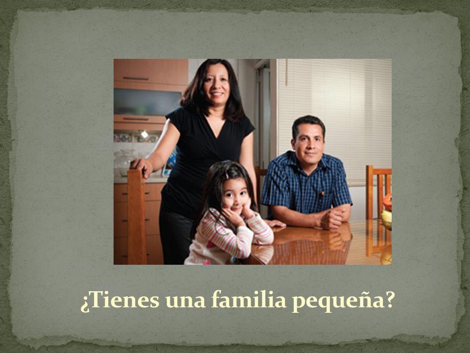 ¿Tienes una familia pequeña