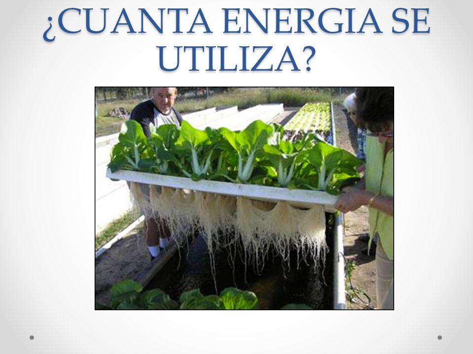 ¿CUANTA ENERGIA SE UTILIZA