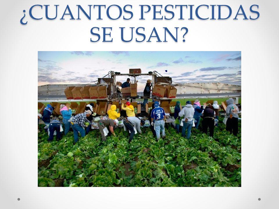 ¿CUANTOS PESTICIDAS SE USAN