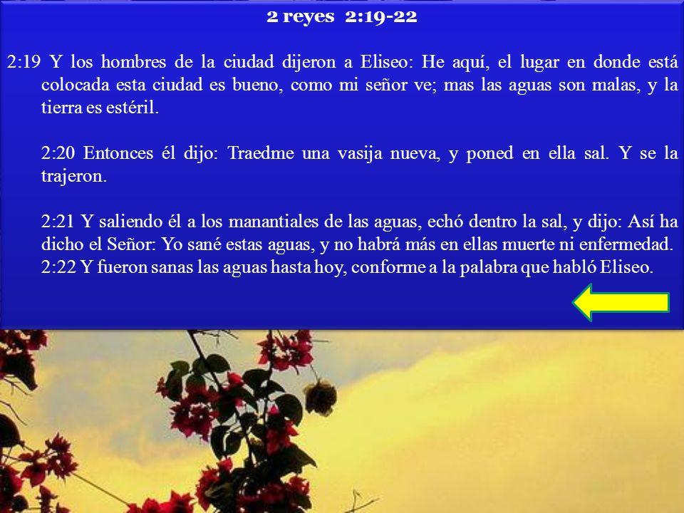 2 reyes 2:19-22