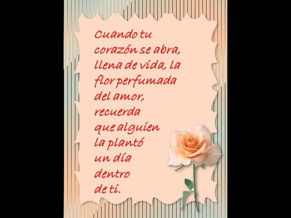 Cuando tu corazón se abra, llena de vida, la flor perfumada