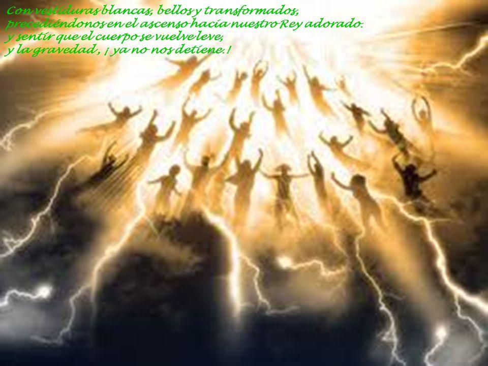 Con vestiduras blancas, bellos y transformados, precediéndonos en el ascenso hacia nuestro Rey adorado.