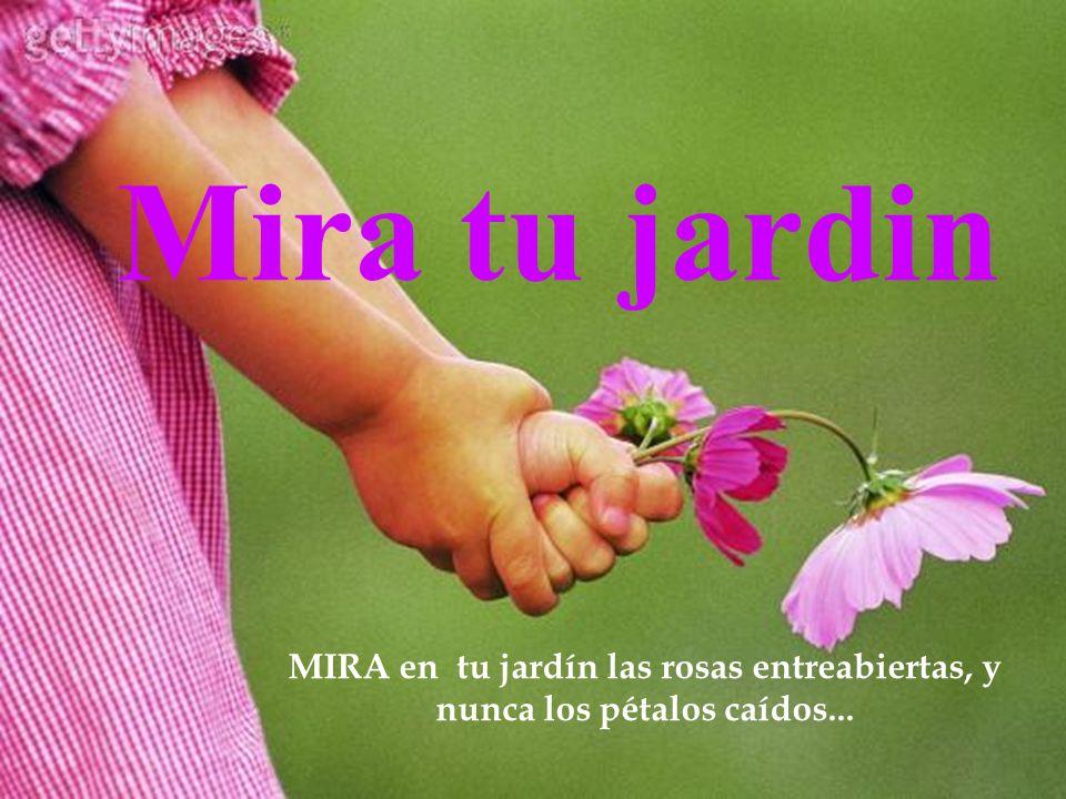 Mira tu jardin MIRA en tu jardín las rosas entreabiertas, y nunca los pétalos caídos...