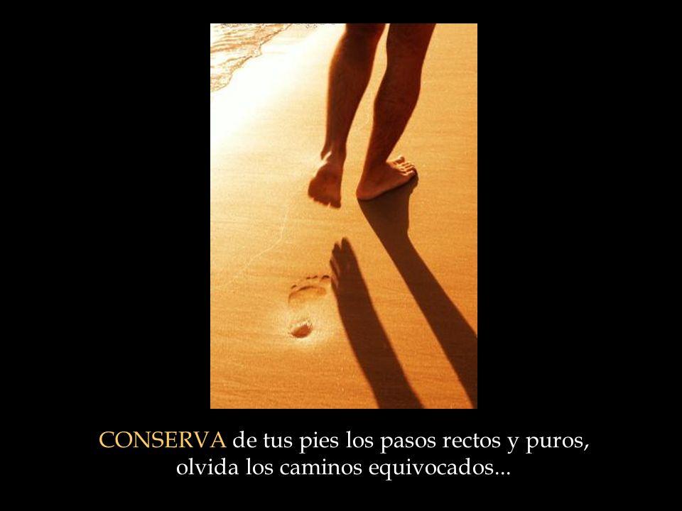 CONSERVA de tus pies los pasos rectos y puros, olvida los caminos equivocados...